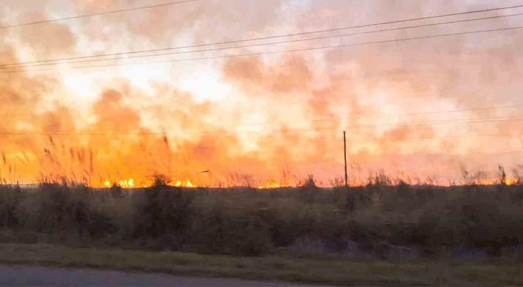 Fuerte incendio en los bosques de Cariló y Valeria del Mar