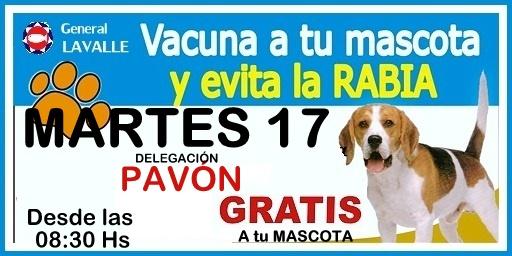 General Lavalle: Vacunacion de Mascotas