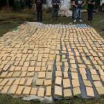 """Operación """"Delfín"""": Secuestran 1180 Kilos de marihuana en panes que iban  a ser comercializados en la Costa Atlántica"""